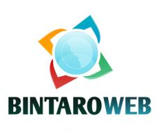 bintaroweb