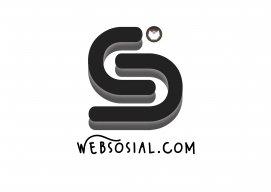 Web Sosial